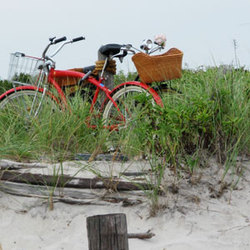 Bike to NYC's Secret Beach, Get Crabs