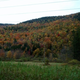 Leaf peeping in Vermont